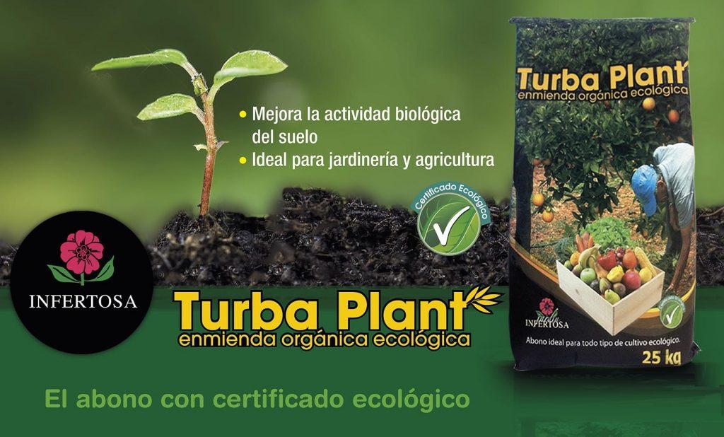 turba plant