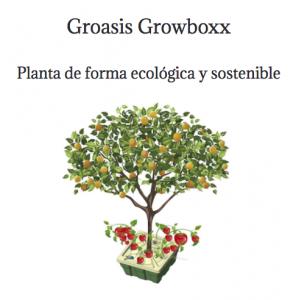 growbox-groasis-acceviri