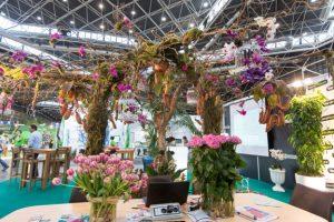 Floristen-iberflora
