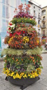Piramide-floral-corma