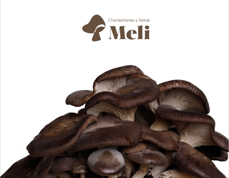 Mushrooms-Meli-Iberflora