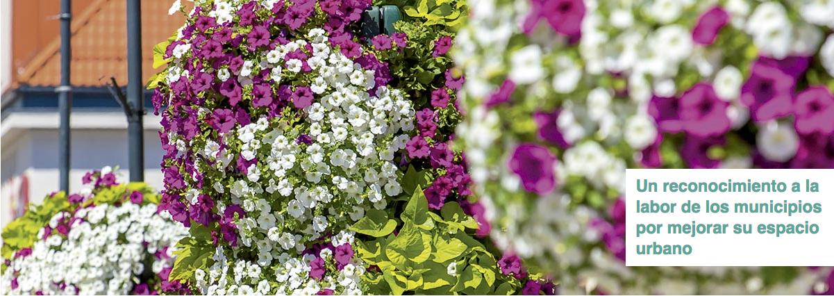 Villas in flower-Iberflora