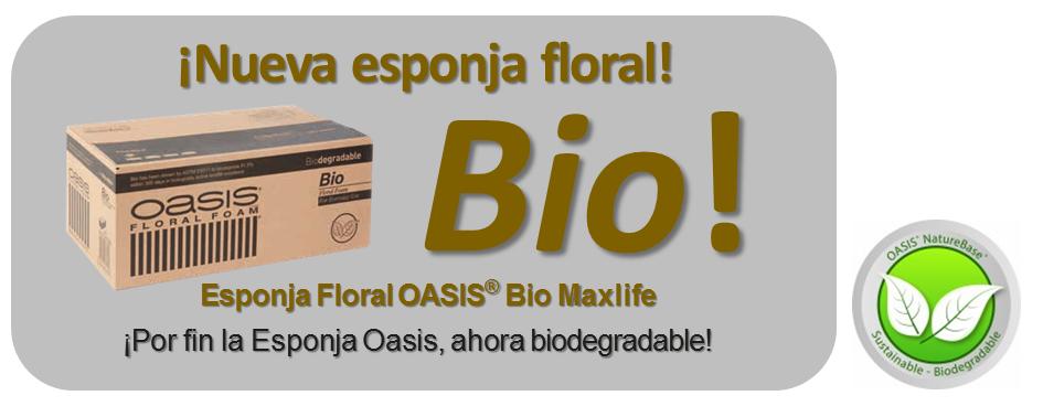Oase-Esponja - biologisch abbaubar-iberflora