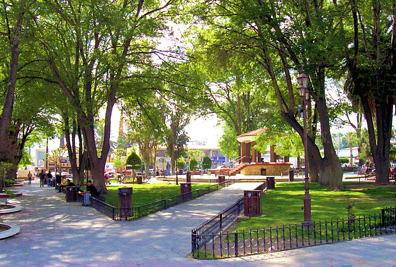 Espacios-Verdes - Städte - Bäume