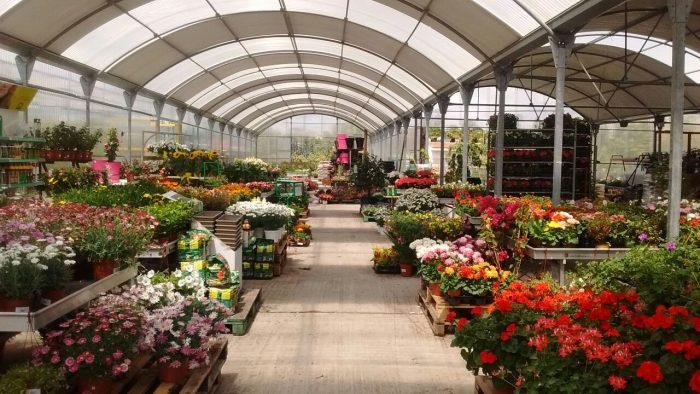 garden-centers-apertura