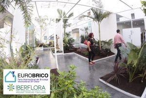 iberflora-eurobrico-2020