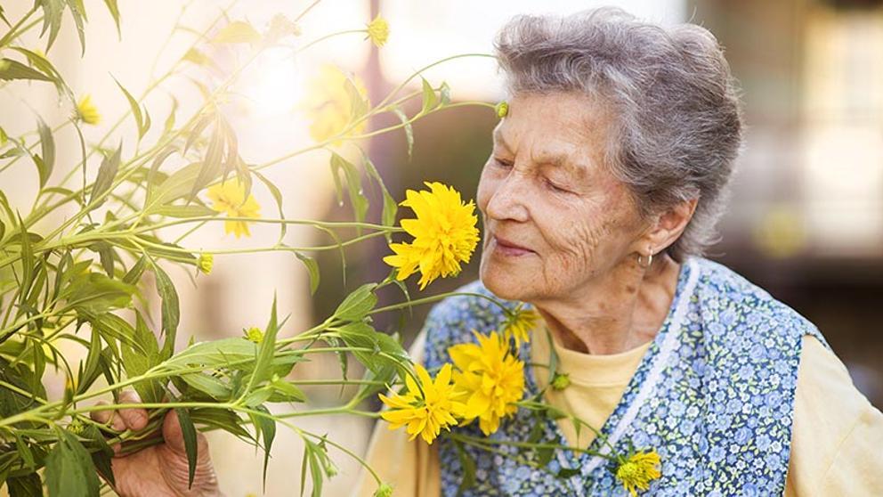 plantas-flores-personas-mayores