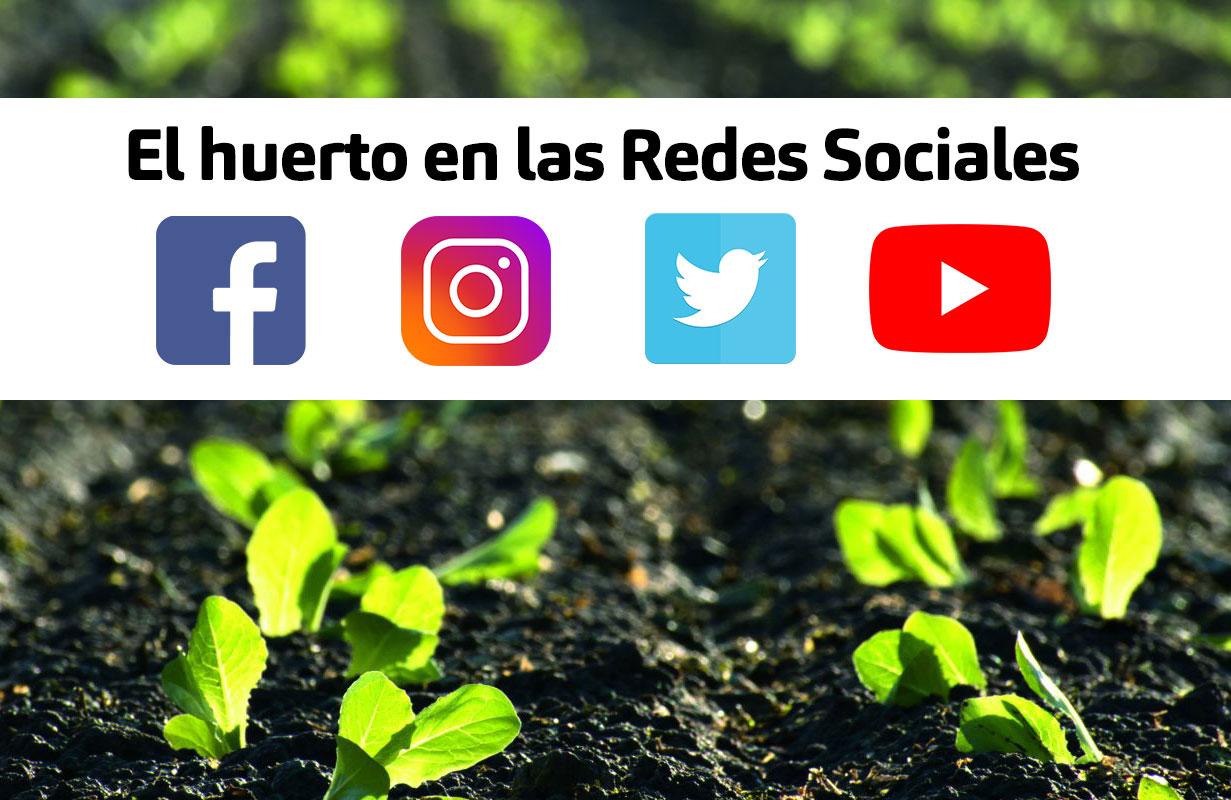 mesa-redonda-influencers-huerto-iberflora