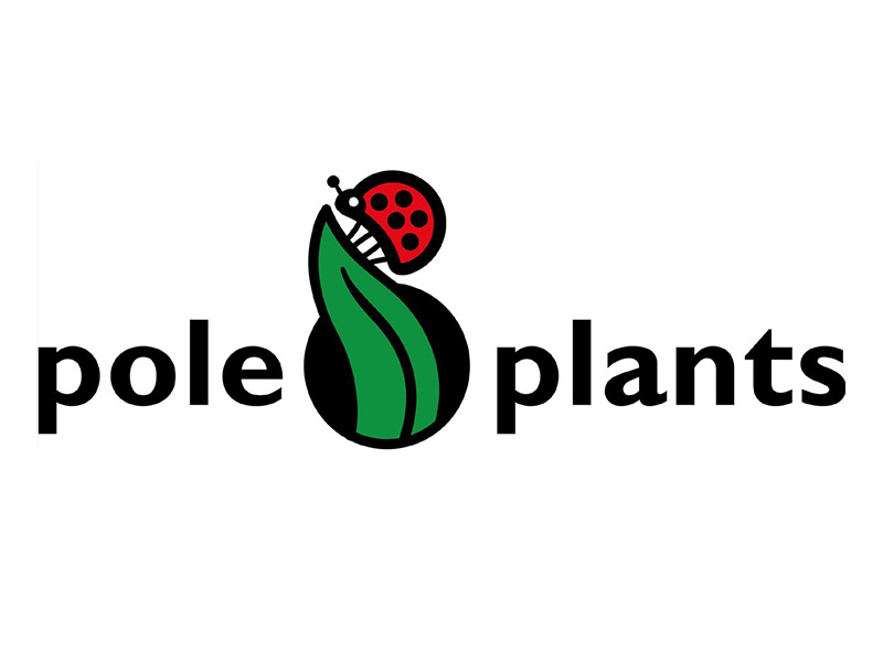 poleplants-iberflora-2021