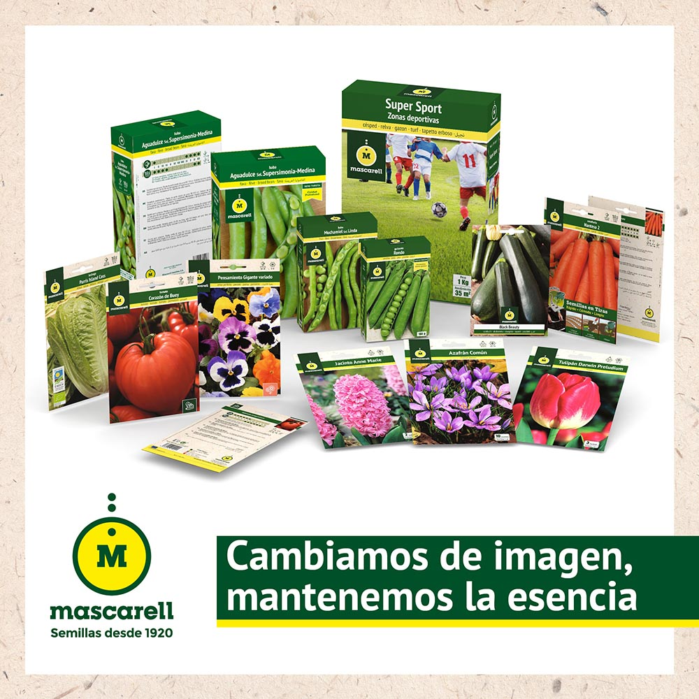 mascarell-seeds-iberflora-21